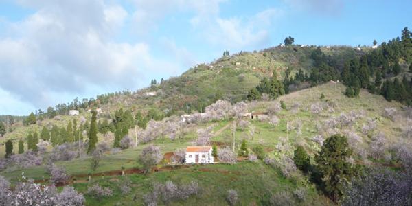 El Castillo. Villa de Garafía. Foto: Luisa Castro
