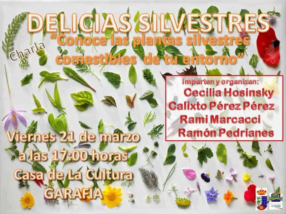 Delicias Silvestres: Conoce las plantas silvestres comestibles de tu entorno