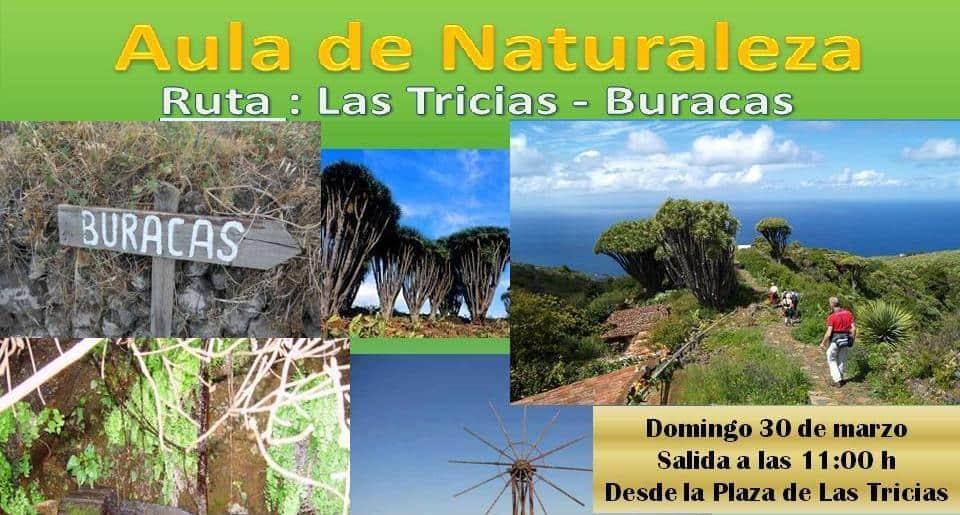Aula de la Naturaleza: Ruta Las Tricias – Buracas