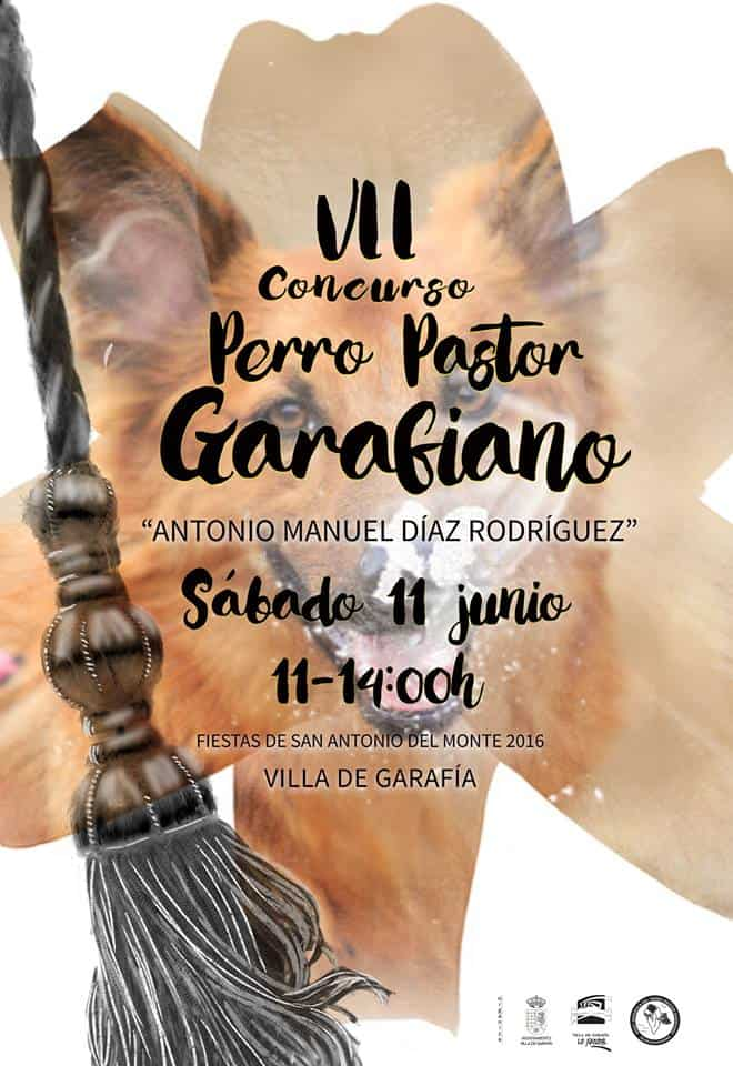 VII Concurso Perro Pastor Garafiano – San Antonio del Monte 2016