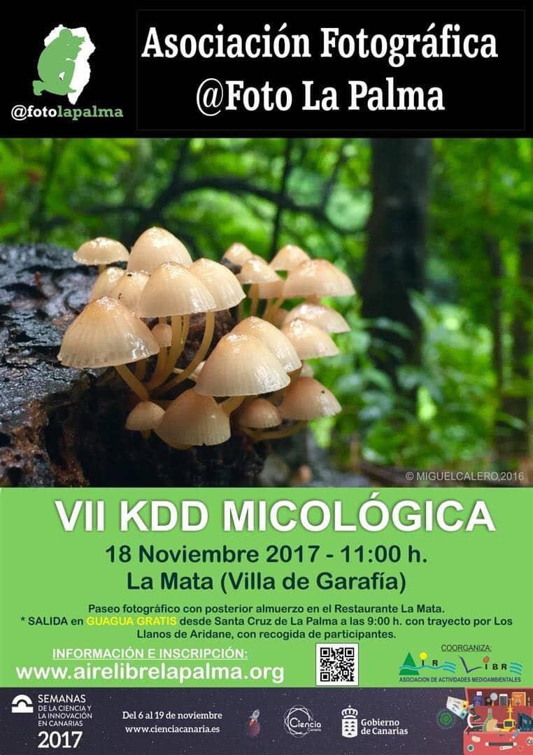 KDD Micológica