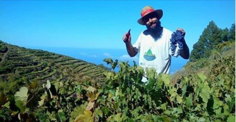 Viñarda entra en una de las listas más influyentes del mundo del vino | Radio Luz
