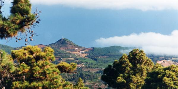 Vista a Llano Negro y San Antonio del Monte. Foto: Luisa Castro