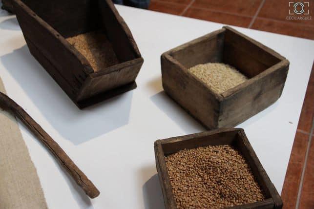 El CIT Tedote gestiona el Museo de Interpretación del Gofio de Garafía