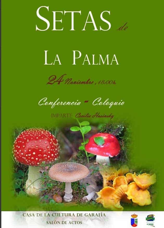 Setas de La Palma
