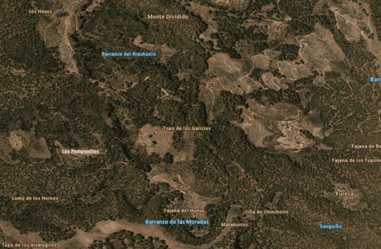 BANDO: Labores Selvícolas de Prevención de Incendios Forestales